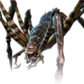 Hermit Fang Spider.png