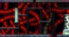 Spiral Hell 0C3.png