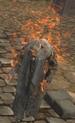 FlameWraith.png