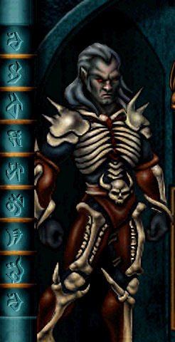 The Bone Armor in Blood Omen: Legacy of Kain.