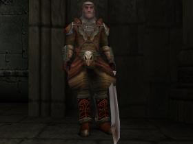 A Vampire Hunter Swordsmen in SR2.