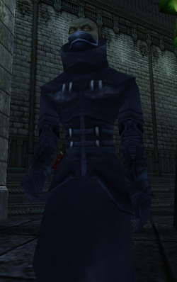 A glyphwright in Blood Omen 2