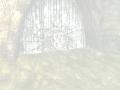 SR2-Swamp-TSC-CrackedDoor-03.png