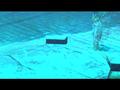 Defiance-C2-Cemetery-PlanarPortal-014.png