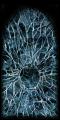 SR2-Texture-Cracked-IceDoor-Retreat.png