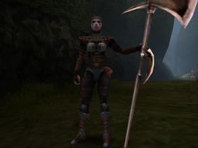 A Vampire Hunter Pikemen in SR2.