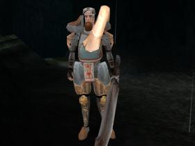 A Demon Hunter Swordsmen in SR2.
