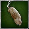 Rabbit Foot.png