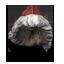 Khoors yule hat.png