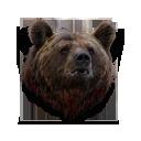 Big bear head.png
