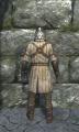 Light scale armor back.jpg