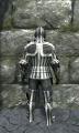Royal full plate armor back.jpg