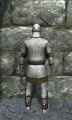 Regular scale armor back.jpg