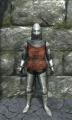Half plate armor front.jpg