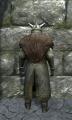 Royal chainmail armor back.jpg