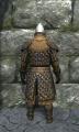 Royal padded armor back.jpg