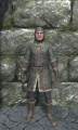 Light chainmail armor front.jpg