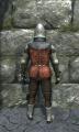 Half plate armor back.jpg