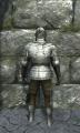 Full plate armor back.jpg