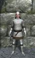 Regular scale armor front.jpg
