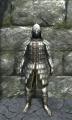 Heavy scale armor front.jpg