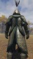 Royal scale armor back.jpg