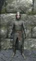 Regular chainmail armor front.jpg