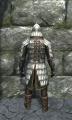 Heavy scale armor back.jpg