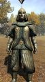 Royal scale armor front.jpg