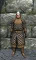 Royal padded armor front.jpg