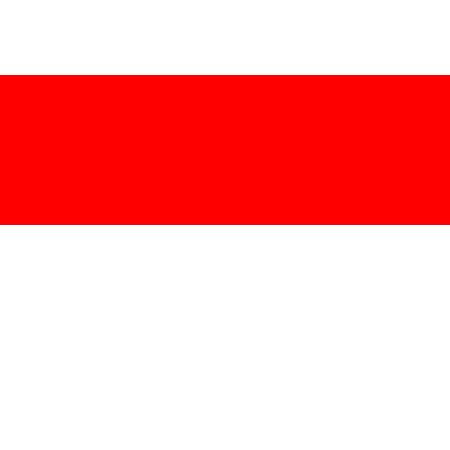File:Indonesia Flag.png - Leaguepedia   League of Legends ...