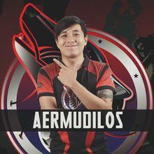 XSW Aermudilos.jpg