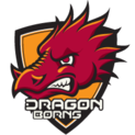 DragonBornslogo square.png