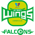 Jin Air Falconslogo square.png