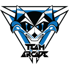 Team Arcadelogo square.png