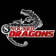 SNOGARD Dragonslogo square.png
