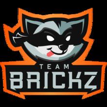 Team Brickzlogo square.png