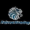 Falcon Gaminglogo square.png