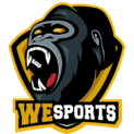 WeSportslogo square.png