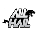 Team All Haillogo square.png