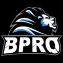 BPro Gaminglogo square.png