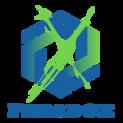 Paradox (Croatian Team)logo square.png