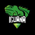 Iguana eSportslogo square.png