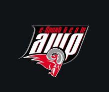 Team AWP logo.jpg