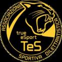 True eSportlogo square.png