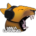 HWA Gaming BaBslogo square.png