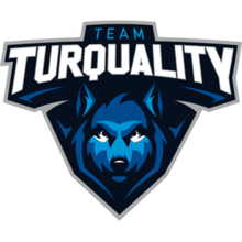 Team Turqualitylogo square.png
