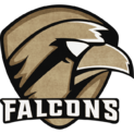 ToxicFalcons Oldschoollogo square.png