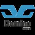 Domino esportlogo square.png