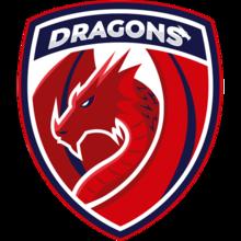 Dragons E.C.logo square.png